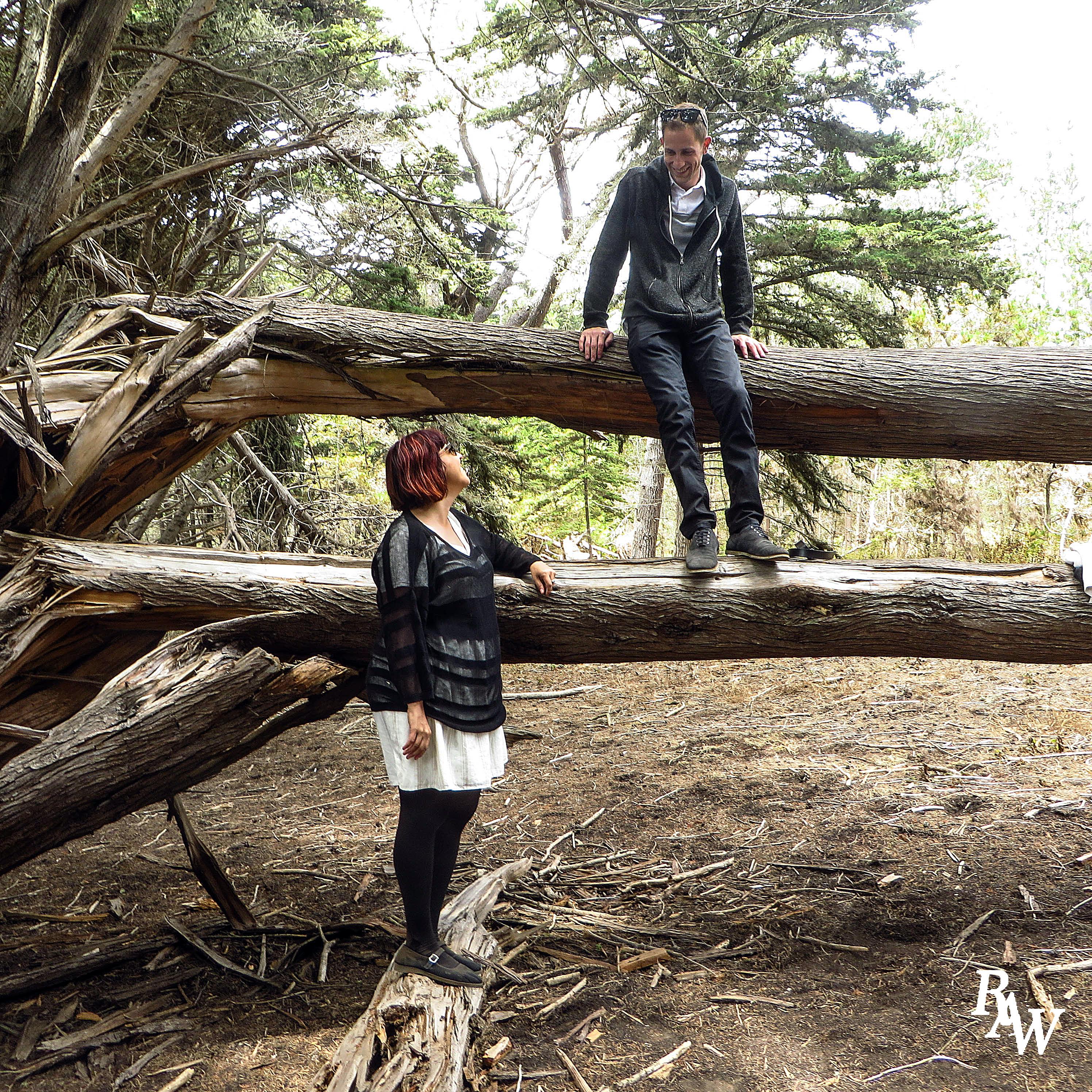 Couple Portrait Photo Forest