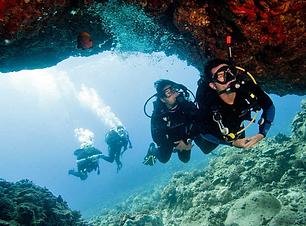 Swim-through.PNG