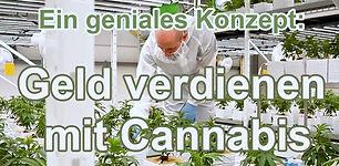 Geld verdienen mit Cannabis.jpg