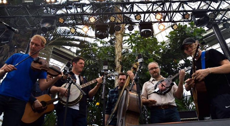 Loose Moose String Band atThe Palm House