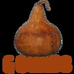 buy gourds Australia, buy gourd seed Australia, gourd seed aus, Australia, gourd art aus, Mothar Mountain Gourds, Grow gourds aus, gourd australia, dried gourds aus, dried gourds australia