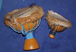 Gourd hairy drums