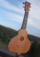 Gourdtar,Ukulele, guitar