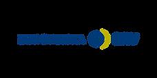 SI Consulting - kund Europeiska ERV