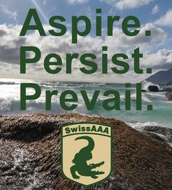 Aspire.Persist.Prevail.