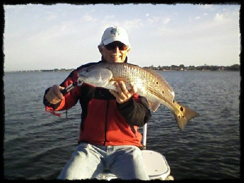 Red Drum