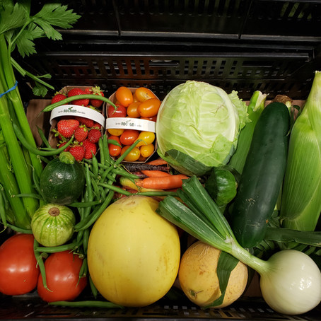 Making the Most of Your CSA Produce