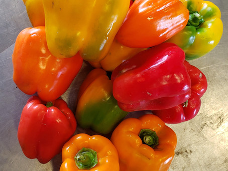 What's🌱at Rochon Garden: Sweet Peppers
