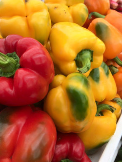 Rochon Peppers