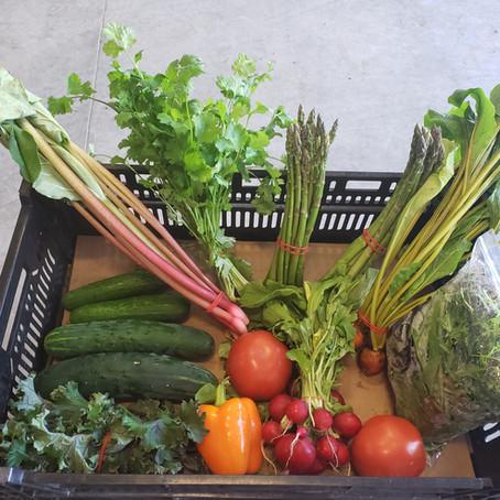 What's🌱 at Rochon Garden: Farm Fresh Fruits
