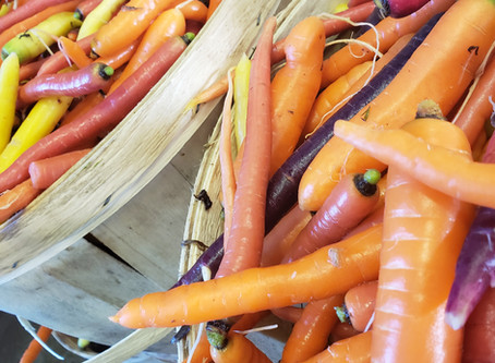 What's🌱at Rochon Garden: Heirloom Carrots