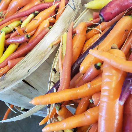 What's🌱at Rochon Garden: Heirloom Carrots
