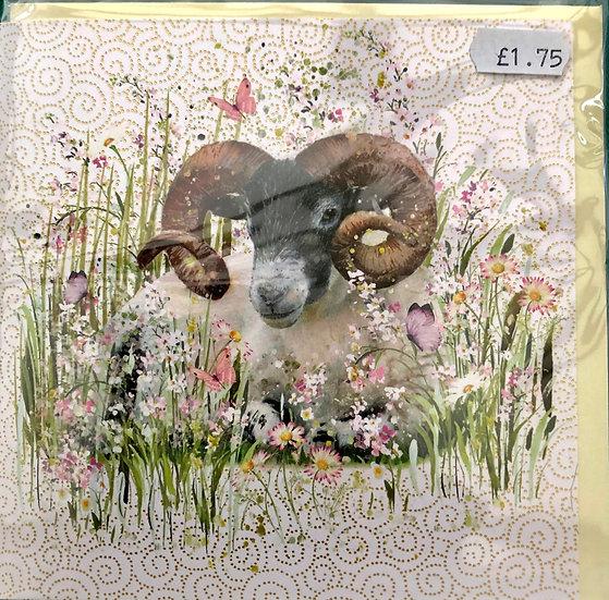 Card - Ram - Blank inside