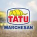IQL e Tatu Marchesan: uma parceria de sucesso