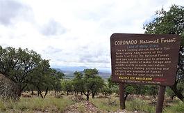 Coronado_Natl_Forest_sign_DSC06938.JPG
