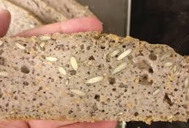 לחם כוסמת - הכי קל ופשוט