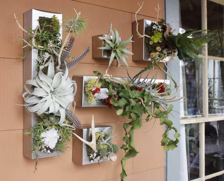 Вертикальное озеленение растениями