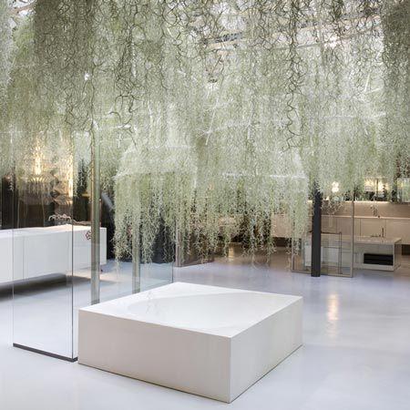 Испанский мох, оформление экспозиции