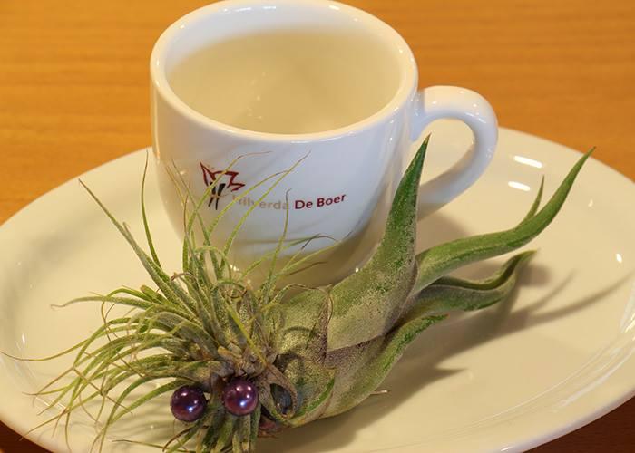 Оформление для подачи кофе