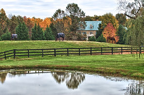 Rural and farm real estate Virginia Realty Partners