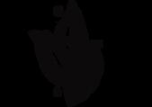 Simpay-logo-negro.png