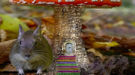 marlene mouse.png
