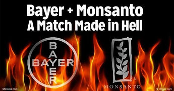 bayer-monsanto-match-made-in-hell-fb-e15