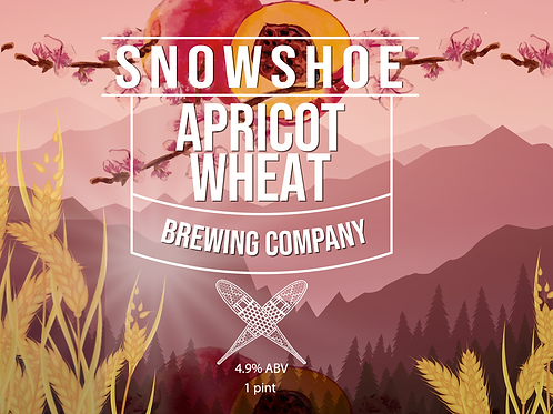 Apricot Wheat 24 pack