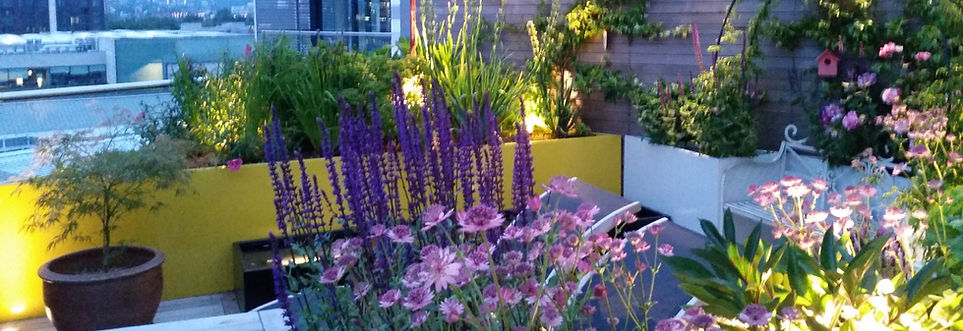 Sky gardens, King's Cross, London
