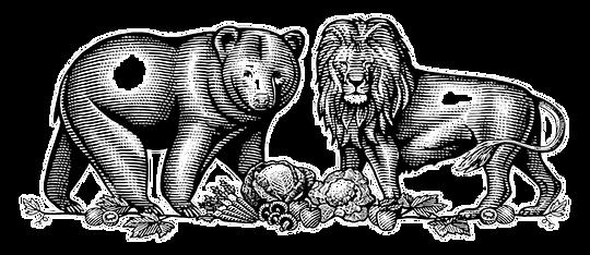 Bear%20Lion-Illustration_edited.png