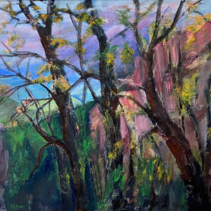 50. Mt Buffalo after the Fire by Yvonne