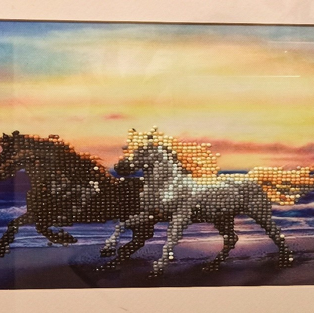 74. Horses by Christopher