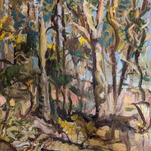 11. Australian Landscape by Johannes