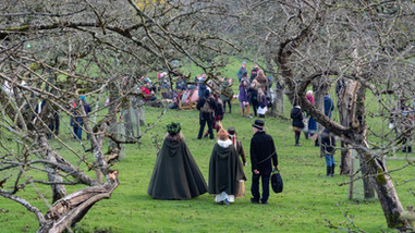 The start of proceedings, Avalon Orchard, Glastonbury.