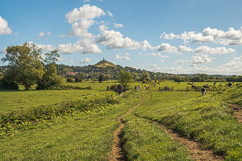 Limited Edition Canvas of Glastonbury Tor