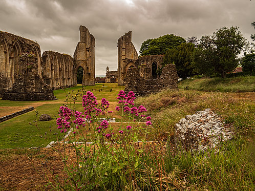 Limited edition print of Glastonbury Abbey in June