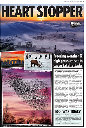 20.01.2020 - Daily Star Landscape Photog