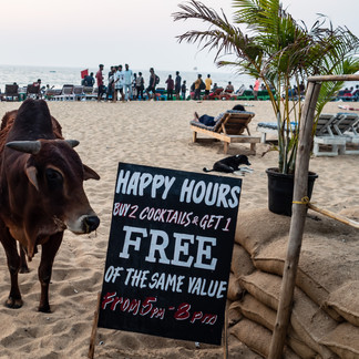 Happy Hour, Candolim, Goa