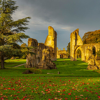 Autumn leaves at Glastonbury Abbey