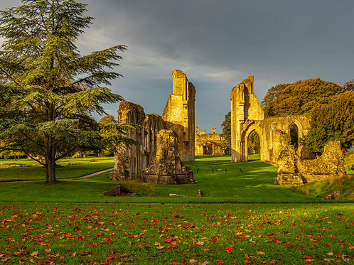 Limited Edition print of Autumn at Glastonbury Abbey