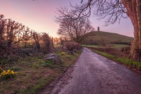 Limited Edition Print of The moon, daffodils and the Tor at dawn.