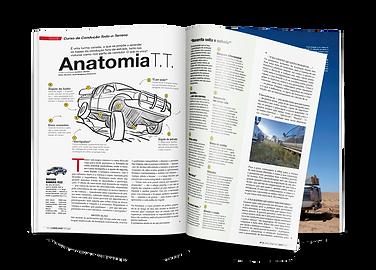Anatomia TT