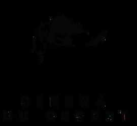Cinéma du Désert