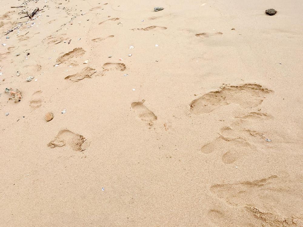 sand ocean and earth meditation