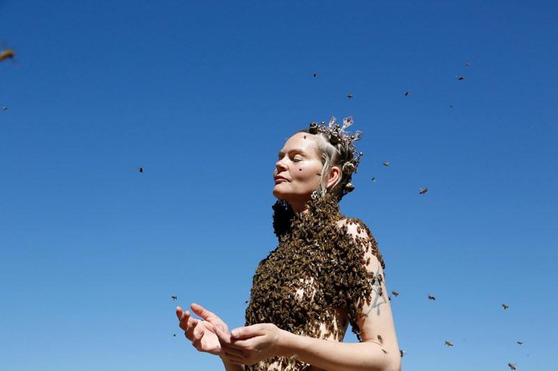 sara mapelli, bees meditation