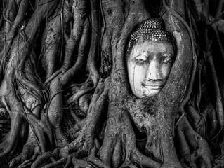 Spiritual Practice 101: Sleep