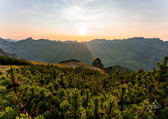 Allgäuer Alpen Ausblick