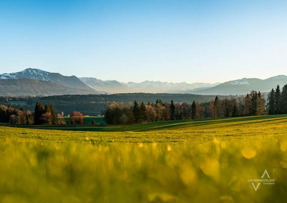 Weitblick in die Allgäuer Alpen mit Grünten