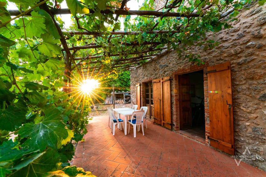 Ferienhaus in der Toskana Terasse mit Weinreben