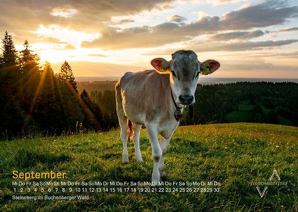 Kalender_2021_Allgäuer_Alpen_A3_V3_9_Se